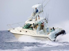 Boston Whaler - 345 Open