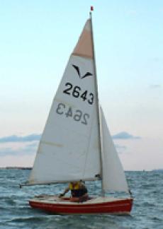 Gull Calypso Cruiser