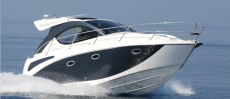 Pearlsea 31